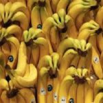 Banana imports by country