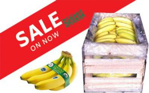 Buy bananas in bulk online