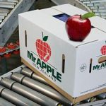 apple fruit importers in Russia