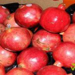 Pomegranate export company