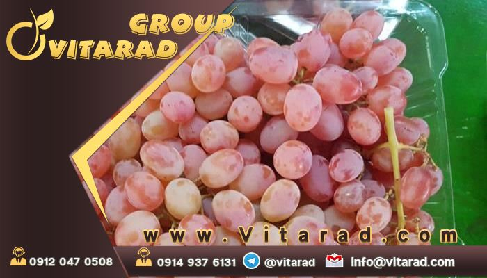 importing red grapes from Iran