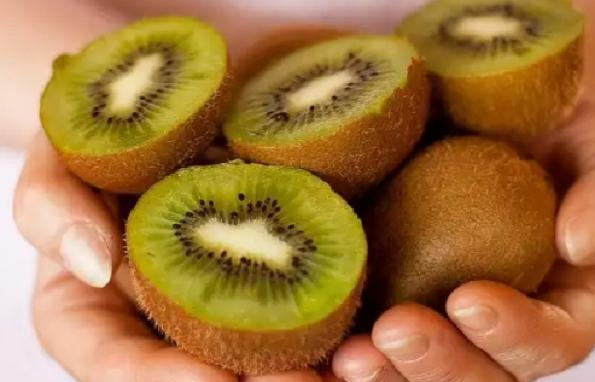 kiwi fruit price per piece | Where to Find Biggest Wholesale?