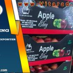 Red delicious apple fruit price